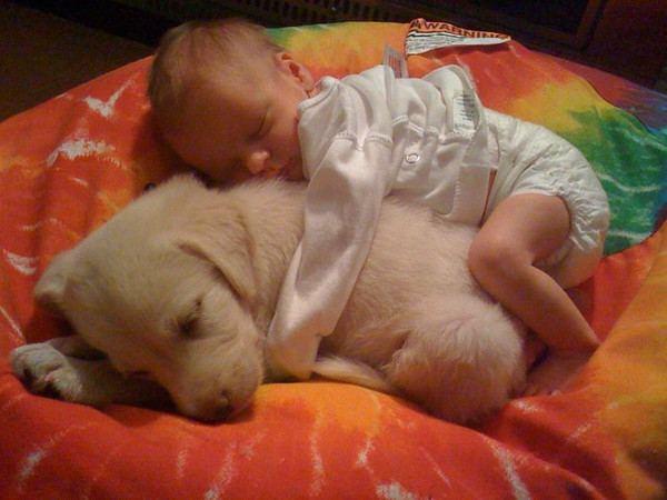 Baby en puppy knuffelen
