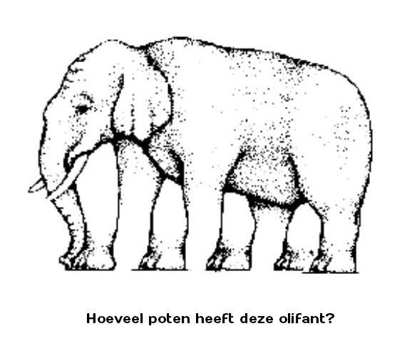 Hoeveel poten heeft deze olifant?