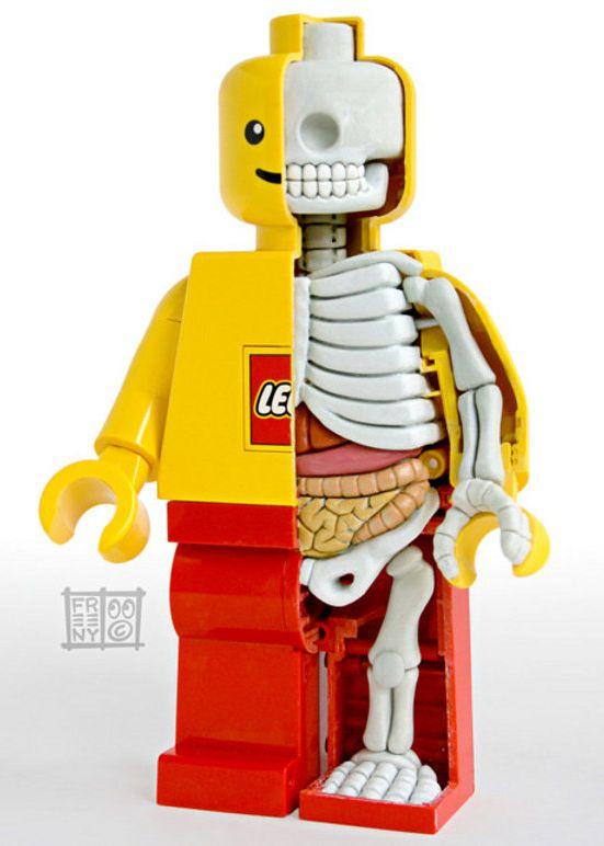 LEGO skelet