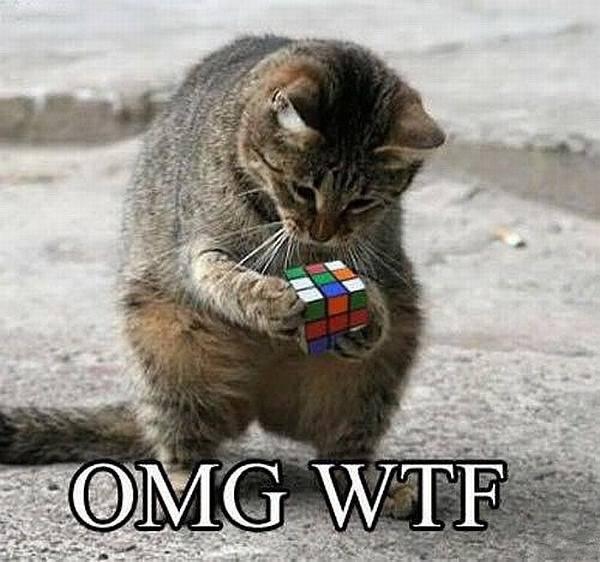 Kat bezig met rubiks kubus