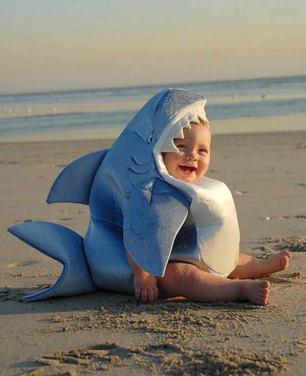 schattige baby haai