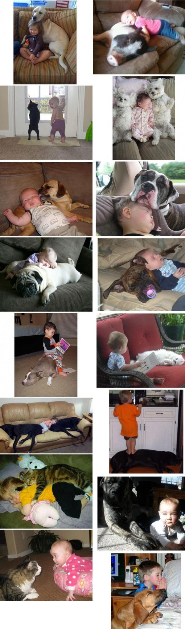 Kinderen met hun huisdier